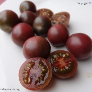 Black and Purple Tomatoes